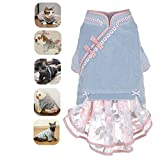 Generies Brands Pet Chinoiserie Hanfu Tutu Dress for Cat Dog Winter Clothing (XL(11lb~15.4lb), Blue)