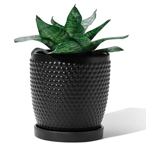 POTEY 053602 Plant Pot with Drainage Hole & Saucer- 5.5 Inch Glazed Ceramic Modern Vintage-Style Hobnail Textured Planters Indoor Bonsai Container for Plants Flower(Matte Black, Plants Not Included)