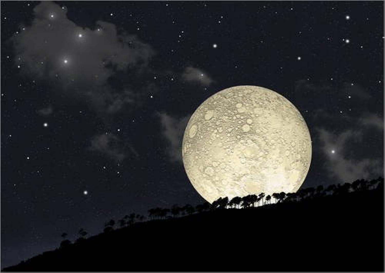 Lienzo 80 x 60 cm  A full moon rising behind a row of hilltop trees. de Marc Ward   Stocktrek Images - cuadro terminado, cuadro sobre bastidor, lámina terminada sobre lienzo auténtico, impresión en...