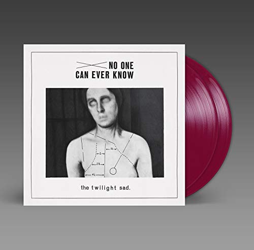 No One Can Ever Know [Vinyl LP]