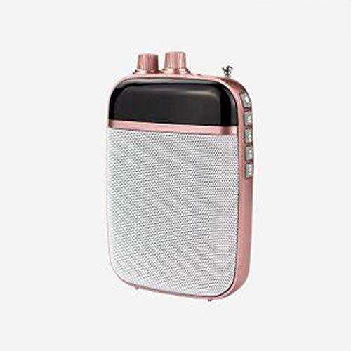 Draadloze voice-versterker met microfoon draagbare mini-luidspreker voor de Tour Guide leraar spreekversterker microfoon luidspreker Fm radio