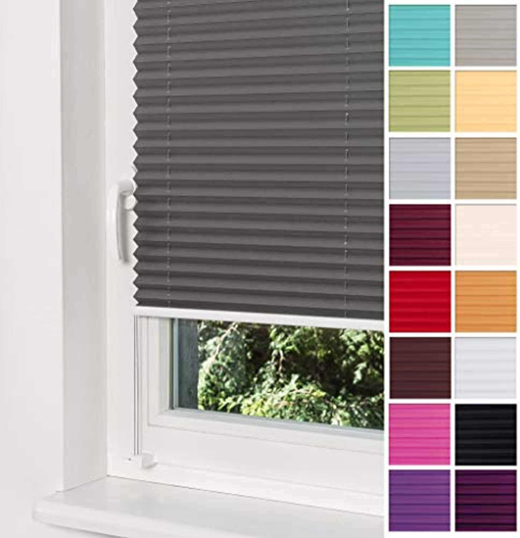 Home-Vision Plissee Faltrollo ohne Bohren mit Klemmtrger   -fix (Graphit, B160cm x H120cm) Blickdicht Sonnenschutz Jalousie für Fenster & Tür