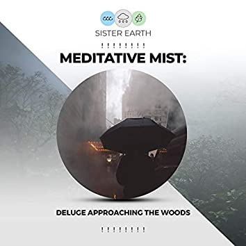 ! ! ! ! ! ! ! ! Meditative Mist: Deluge Approaching the Woods ! ! ! ! ! ! ! !