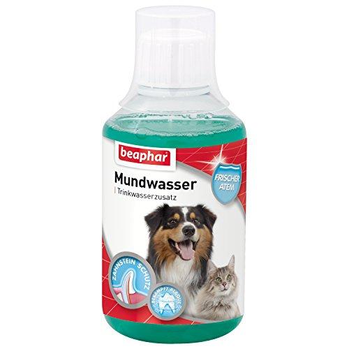 Mundwasser für Hunde & Katzen | Trinkwasserzusatz gegen Mundgeruch bei Hunden & Katzen | Bekämpft Plaque | Beugt Zahnstein vor | Mit Menthol | 250 ml