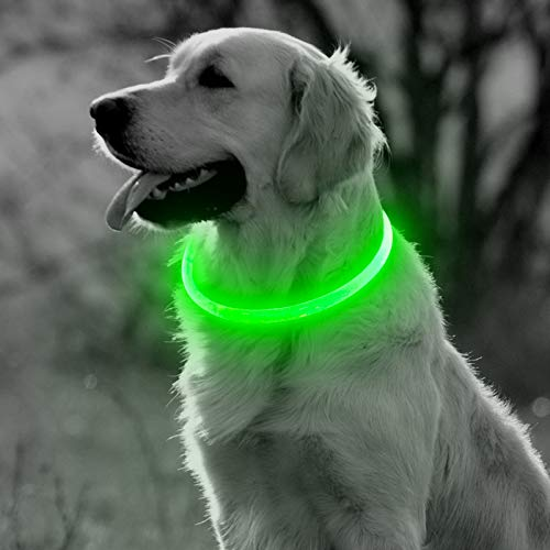 BSeen LED Dog Collar, USB Rechargeable Glowing Pet Collar, TPU Cuttable Dog Safety Lights for Small Medium Large Dogs (Green)
