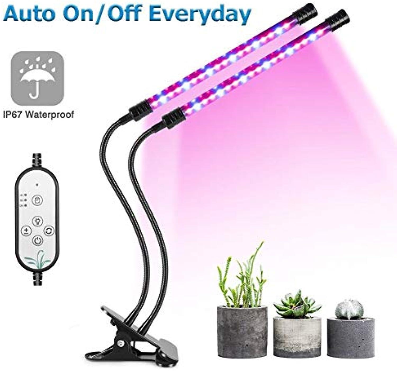 BF-DCGUN Plant Grow Light LED Grow Light für Zimmerpflanzen 18W 36 LED-Lampen Auto ON Off Everyday mit rotem und blauem Spektrum, 4 8   12H-Timer