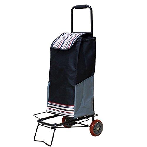 Liusixiao-winkelwagentje handwagen trolley huishouden opvouwbare draagbare bagagewagen winkelwagen hendel auto oude trolley ladder 45 kg OYO