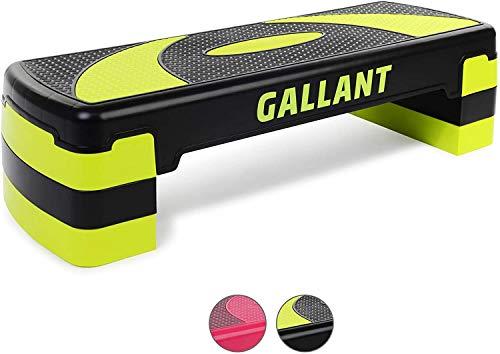 Gallant Aerobic...
