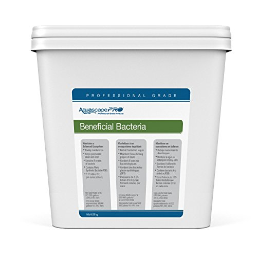 Aquascape Beneficial Bacteria Water Treatment for Ponds, Pro Contractor Grade, Dry, 1 Gallon/3.78 L | 30407
