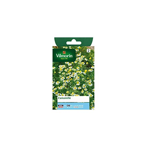Vilmorin - Sachet graines Camomille