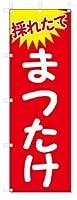 のぼり のぼり旗 まつたけ (W600×H1800)