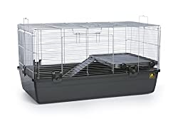 8 Best Gerbil cages | Complete Gerbil Cage Review 2021 1