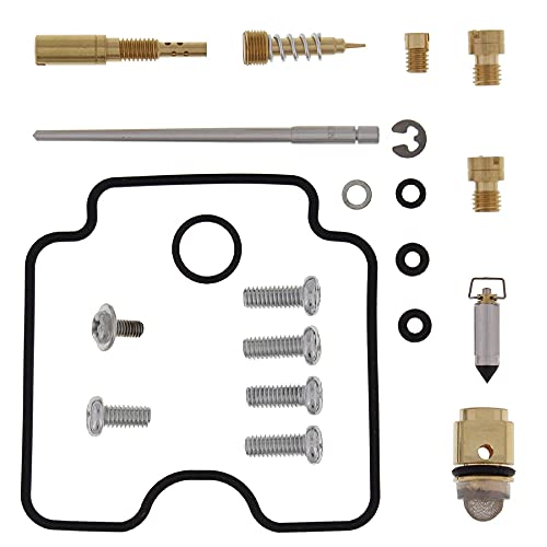 New All Balls Carburetor Kit, Compete Compatible With/Replacement For Arctic Cat 400 Dvx 04-08, 26-1071