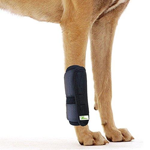 RockPet Attelle pour Articulation Patte Avant pour Chien, Bandage Thérapeutique de Hanche pour Canins (S/M)