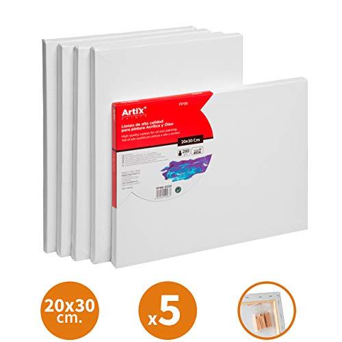 Pack 5 Lienzos Pre-estirados Lienzos para Pintar 20x30cm Lienzo Blanco Algodon 100% para Pintura Acrilica, Oleo y Técnica Mixta | Artix PRO