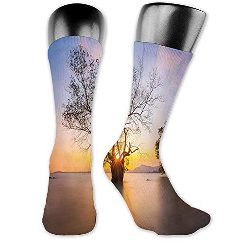 Ingpopol Medium long Crew Socks,Coastal,Dawn Time Rising Sun at Seascape with Autumn Trees in Water Habitat Theme,Unisex 15.7