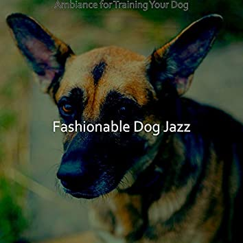 Ambiance for Training Your Dog