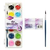 Hey Caterpillar Pintura de color/pigmento pintada a mano, 12 colores, juego de pintura de acuarela sólida