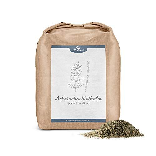 Krauterie Acker-Schachtelhalm Schachtelhalmkraut Zinnkraut geschnitten in sehr hochwertiger Qualität, frei von jeglichen Zusätzen, als Tee (Equisetum arvense) – 1000 g