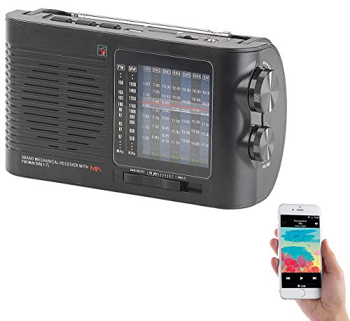 auvisio Radios: Analoger 9-Band-Weltempfänger mit Bluetooth, USB, SD, AUX und Akku (Kleines Radio)