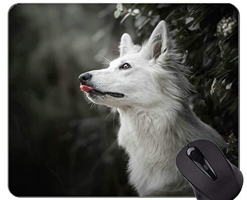 Naturkautschuk-Gaming-Mauspad mit Schweizer Swiss Shepherd Dog - genähte Kanten
