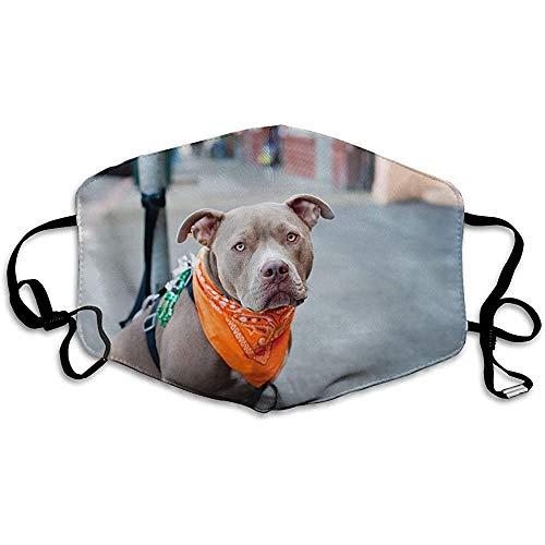 Unisex Print mondmasker - humor hond met sjaal polyester mond-moffel - modieuze gewassen herbruikbare gezichtsmaskers voor het fietsen in de open lucht