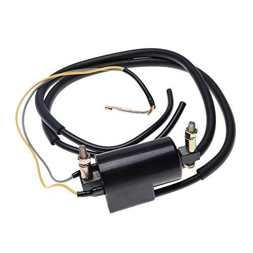 Dual Lead Wire Ignition Coil 12V for Honda Kawasaki Yamaha Suzuki CA CB CM KZ XS GS 750 400 450 175 Replace 30501-323-003 21121-1174 33410-44X50 1AA-82310-09-00