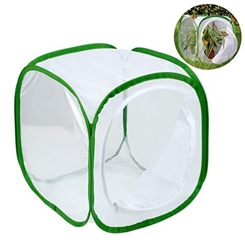 NROCF Cage D'insectes Et De Papillons Habitat Transparent Pop-Up, 12 X 12 X 12 Pouces (Blanc + Vert)