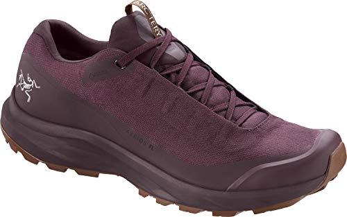 Arc'teryx Aerios FL GTX Hiking Shoes