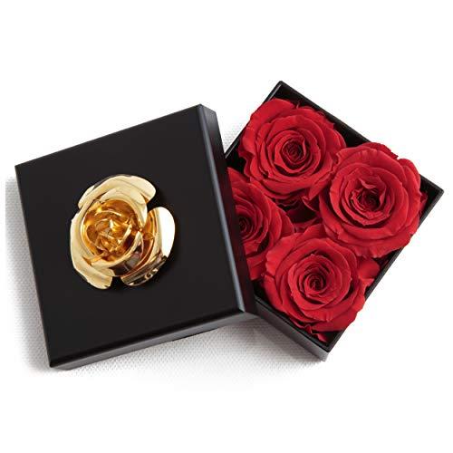 ROSEMARIE SCHULZ Heidelberg Kleine Infinity Röschen haltbar 3 Jahre in Box Rose konserviert (Rot, 4 Röschen)