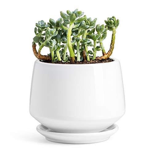 "POTEY Ceramic Plant Pot Flower Planters - 5.9"" with Drainage Hole Saucer..."
