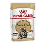 Royal Canin -felino Breed Nutrición Wet Maine Coon Adulto, 12x85g