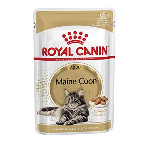 Royal Canin -felino Breed Nutrición Wet Maine Coon Adulto, 12x85g