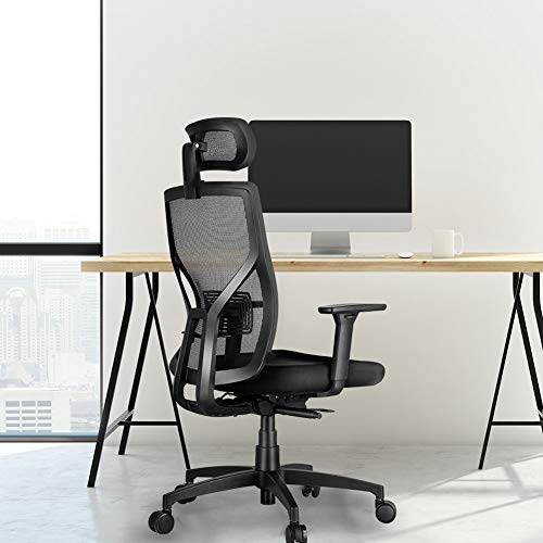 MOLENTS Ergonomic Executive Office Chair High-Back...