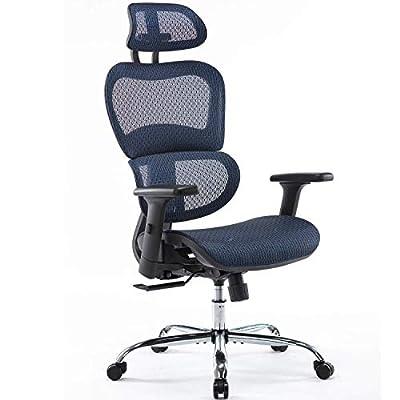 Office Chair, Ergonomics Mesh Chair Computer Chair Desk Chair High Back Chair w/Adjustable Headrest and Armrests - Black