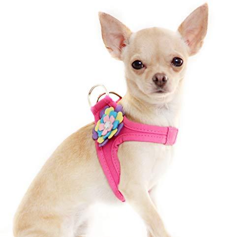 Lushpetz Arnés perro flor correa juego color rosa