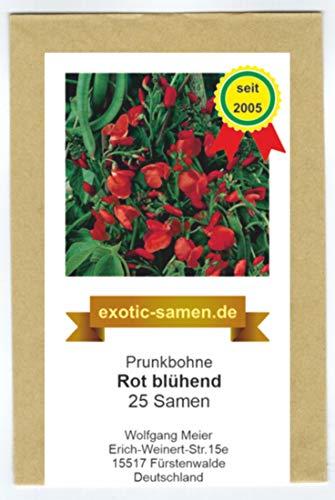 Prunkbohne Rot blühend - Feuerbohne - 25 Samen