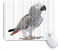 TARTINY ゲーミング マウスパッド,アフリカ灰色のオウムの野生動物の鳥の肖像画,マウスパッド レーザー&光学マウス対応 マウスパッド おしゃれ ゲームおよびオフィス用 滑り止め 防水 PC ラップトップ