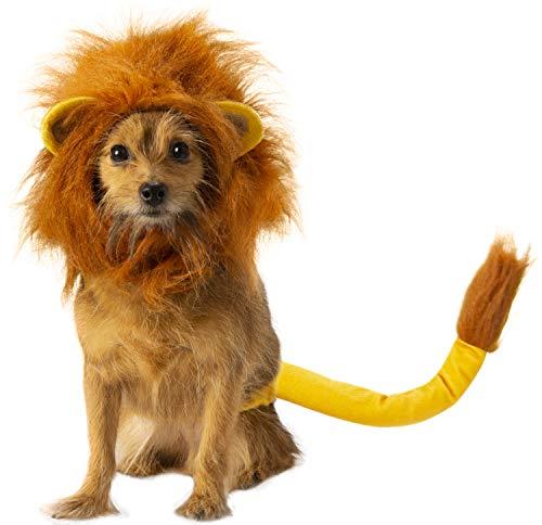 Rubie's Disney: Lion King Pet Costume Accessory Set, Simba, Medium/Large