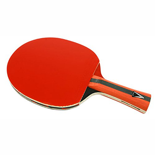 Find Bargain nobrand Champion V 2.0S Table Tennis Racket Shakehand Ping Pong Bats Paddle Blade