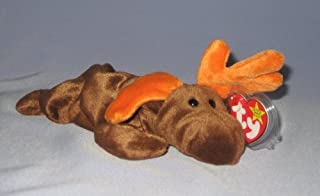 Chocolate Ty Beanie Babies The Moose