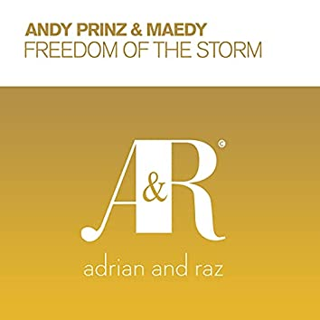 Freedom of The Storm