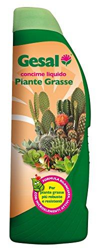 GESAL Concime per Piante Grasse, 500 ml,...