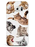 Inspired Cases - 3D Textured Galaxy S6 Case - Rubber Bumper Cover - Protective Phone Case for Samsung Galaxy S6 - Funny Cats 2