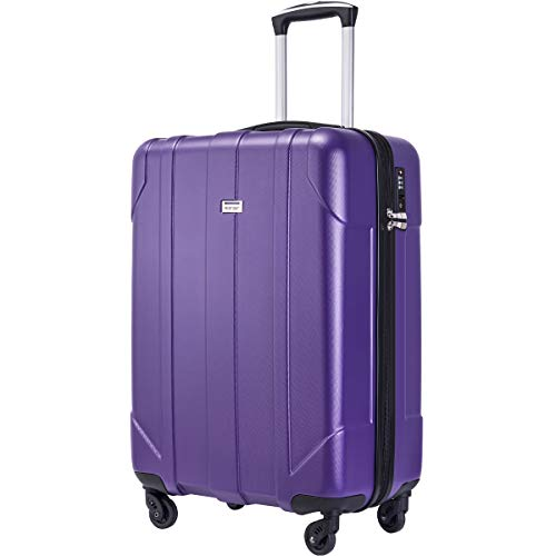 Merax Hardside Spinner Luggage with Built-in TSA Lock Lightweight Suitcase 20inch 24inch and 28 inch Available (Purple, 20 inch)