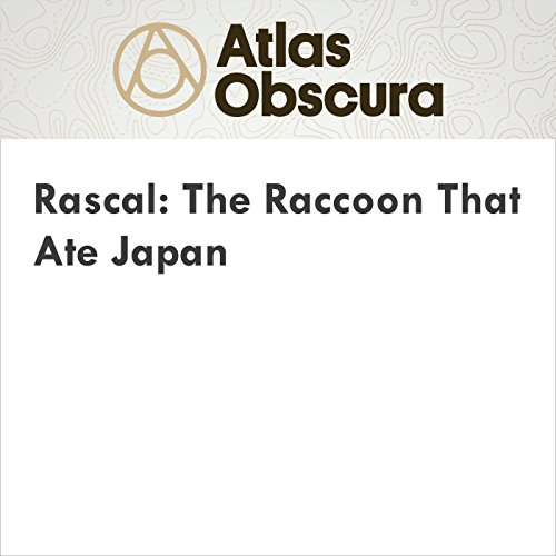 Rascal: The Raccoon That Ate Japan cover art
