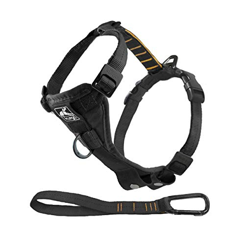 Lightweight dog harness