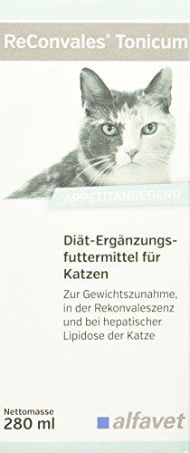 Alfavet ReConvales® Tonicum Katze 280 ml Diät-Ergänzungsfuttermittel zur Gabe in der Rekonvaleszenz, bei Untergewicht und bei der hepatischen Lipidose der Katze