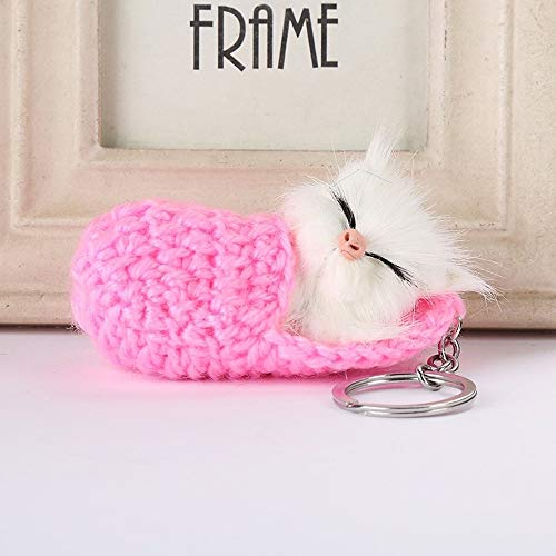 Key Ring Leuke Kat van de slaap Pompom Sleutelhangers for Dames Meisjes handgemaakte geweven Schoenen Faux Rabbit Fur Car Key Rings QPLNTCQ (Color : Pink, Size : FREE)