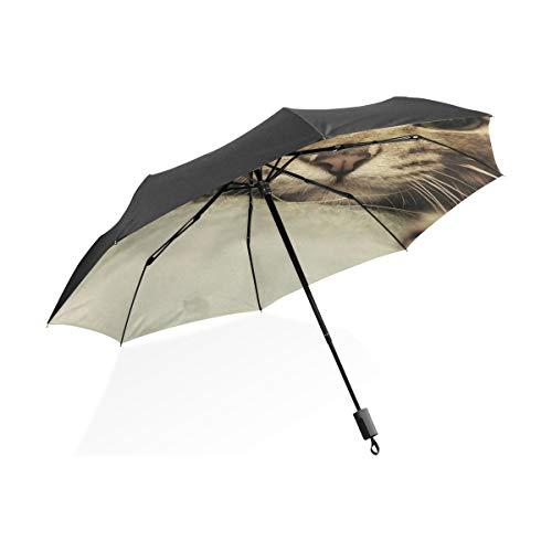 FANTAZIO Fantasio Reise-Regenschirm, niedliche Katze, Sonnenschirm/Regenschirm